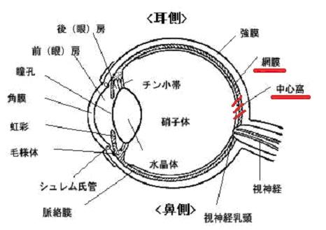 中心性视网膜病变